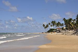 praia de maracaipe3