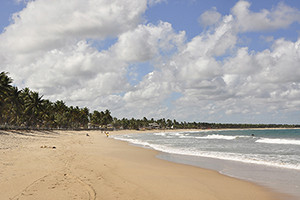 praia de maracaipe6
