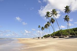 praia de maracaipe9