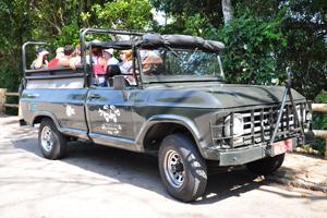 Atividade  Passeio de Jipe pela Floresta da Tijuca em rio de janeiro